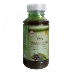 Karela Jamun Juice 500ML (Gluten-Free, Vegan)