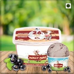 Black Current Ice Cream Tub 450 gms