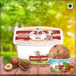 Chocolate Hazelnut Ice Cream Tub 450 gms