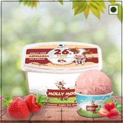 Real Strawberry Ice Cream Tub 450 gms