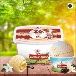 French Vanilla Ice Cream Tub 450 gms