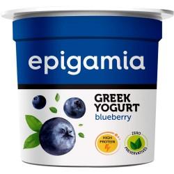 Greek Yogurt Blueberry 90 gms