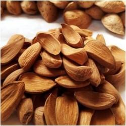 Almonds Mamra Giri 250 gms