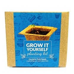Grow It Yourself Planting Kit Tulsi Seeds