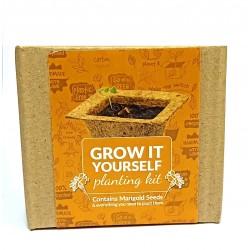 Grow It Yourself Planting Kit Marigold Seeds