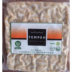 Organic Tempeh (Vegan Fermented Superfood) 180 gms