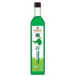 Organic Aam Panna Concentrate 700ml
