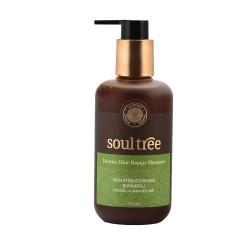 Licorice Hair Repair Shampoo Wiith Strengthening B