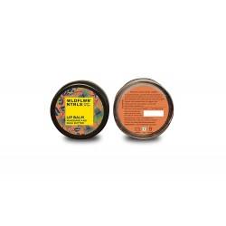Mandarin and Shea Butter Lip Balm 8 gms