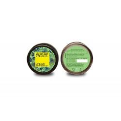 Mint and Green Tea Lip Balm 8 gms